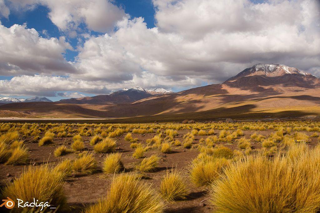 VIAJE-CHILE-2016-52