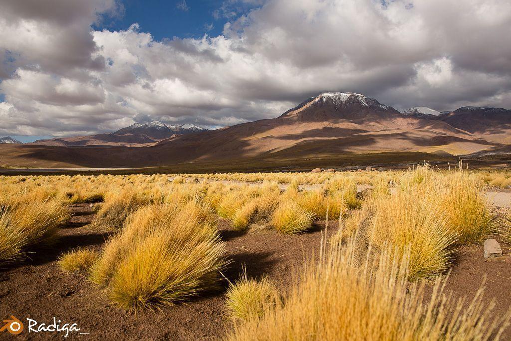VIAJE-CHILE-2016-55