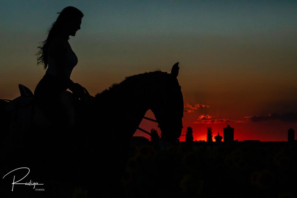 Preboda en Mayorga con caballos